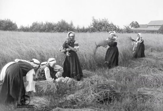 « Voyage à travers le Setomaa » : premiers regards cinématographiques sur les Setos